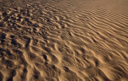 Rippled Sand in der Wüste