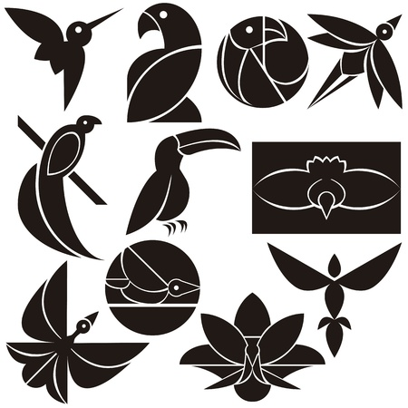 A vector set of beautiful eco logo birds
