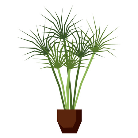 Vector Cartoon Plant Isolated On White Background