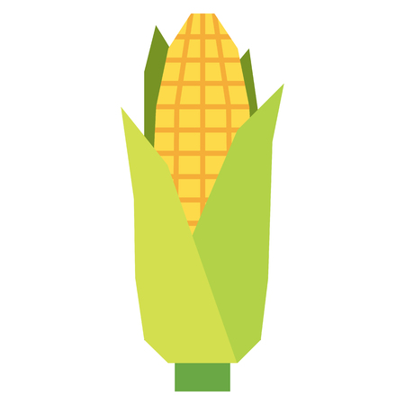 Vector Cartoon Corn Isolated On White Background