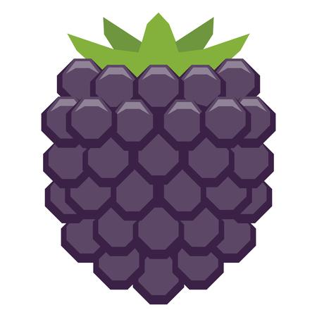 Vector Cartoon Blackberry Isolated On White Background Stock Photo