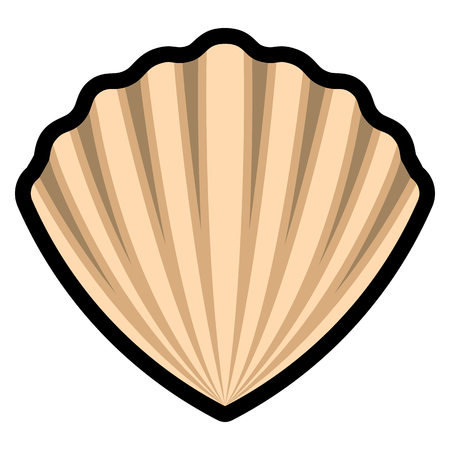 Vector Sea Shell Isolated On White Background Illustration