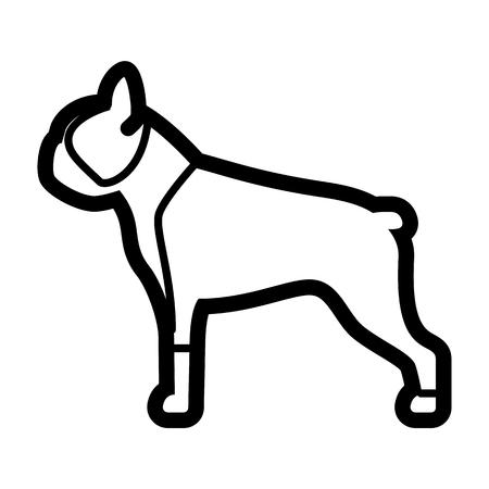 Vector Boston Terrier Dog Icon Isolated On White Background Illustration