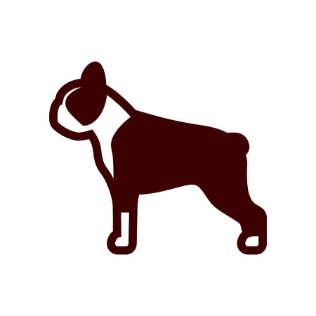 Vector Boston Terrier Dog Icon Isolated On White Background Иллюстрация