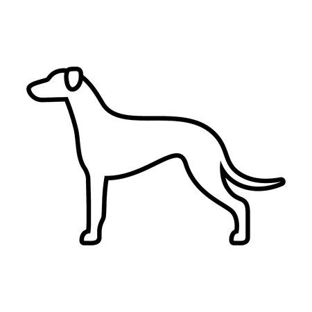 Vector Greyhound Dog Icon Isolated On White Background