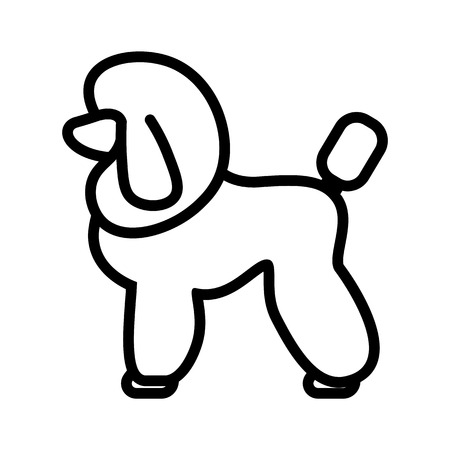 Vector Poodle Dog Icon Isolated On White Background
