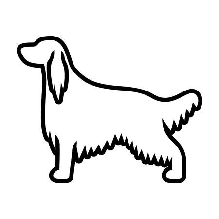 Vector Irish Setter Dog Icon Isolated On White Background Illustration
