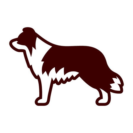 Vector Border Collie Dog Icon Isolated On White Background