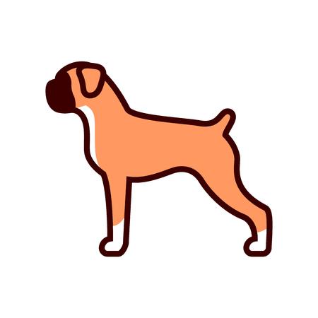 Vector Boxer Dog Icon Isolated On White Background