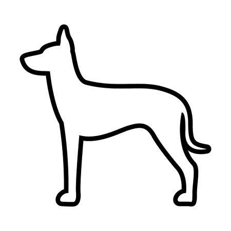 Vector Xoloitzcuintli Dog Icon Isolated On White Background