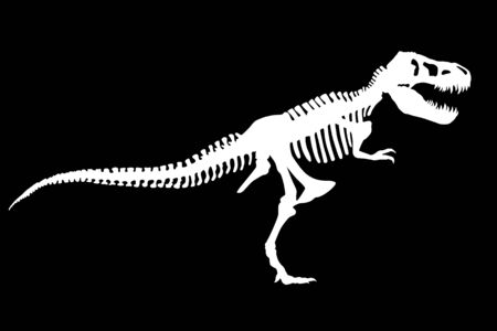 Vector Dinosaur Tyrannosaurus Rex Skeleton Silhouette Illustration Isolated 矢量图像