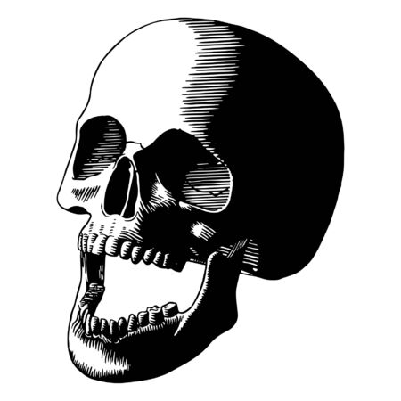Carving Cartoon Black and White Skull Isolated