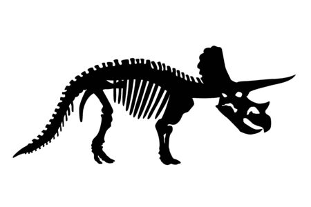 Vector Dinosaur Triceratops Skeleton Silhouette Illustration Isolated