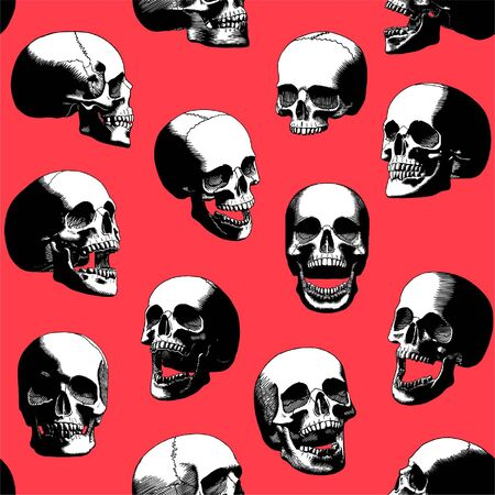 Carving Cartoon Set of Black and White Skulls with Red Background Isolated
