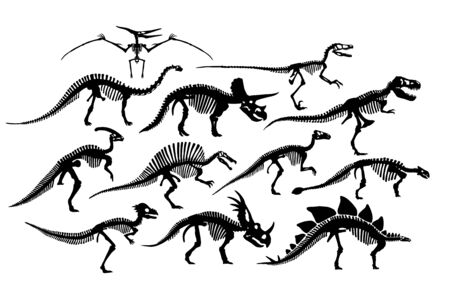 Vector Set Of Different Dinosaur Skeletons Silhouettes Isolated