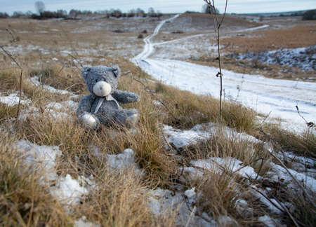 Forgotten, lost toy gray teddy bear outdoors in winter. Banco de Imagens