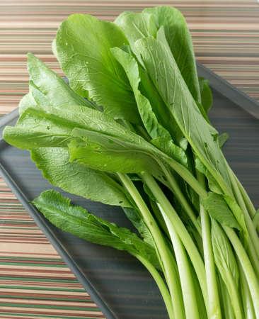 vegetable tray: Vegetable, Fresh Oganic Chinese Cabbage, Pok Choi, Bok Choy or Pak Choi on A Tray.
