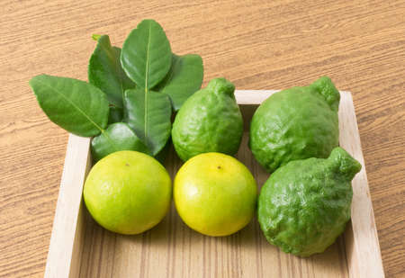 vegetable tray: Vegetable and Herb, Kaffir Lime with Persian Lime and Kaffir Leaves for Seasoning in Cooking on Wooden Tray.