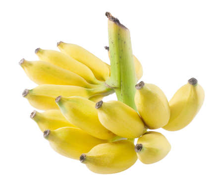 Fruits, Bunch of Ripe and Sweet Yellow Wild Asian Bananas or Cultivated Banana Isolated on White Background. Reklamní fotografie