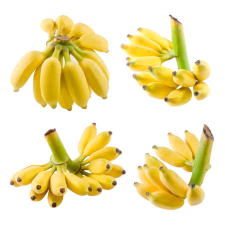 Fruits, Set of Ripe Wild Bananas, Asian Bananas or Cultivated Bananas Isolated on White Background. 免版税图像