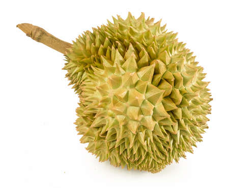 Tropical Fresh Ripe Durian Isolated on White Background. One of The Most Popular Fruits in The World and King of Fruits in Thailand.