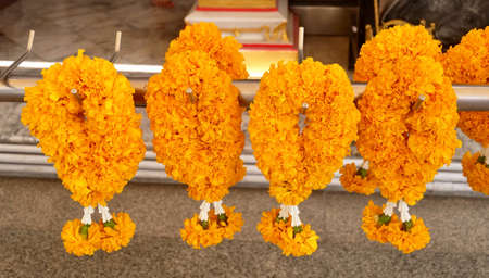 Beautiful Yellow Marigold Wreaths or Garlands, The Garland in Thai Tradition Style Used to Pay Respect to The Buddha. Stock Photo