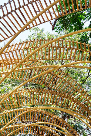Bamboo Arch Over The Path or Walkway in A Garden Park for Walking Along. Stock Photo