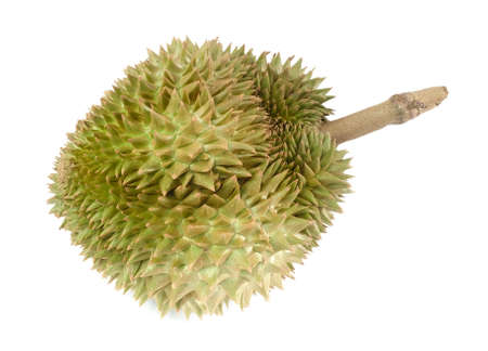 Tropical Fresh Ripe Durian Isolated on White