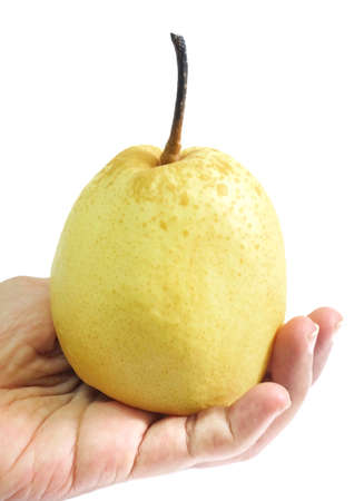 Fresh Fruit, Hand Hodling Sweet Nashi Pear, Asian Pear or Pyrus Pyrifolia Fruit Isolated on White