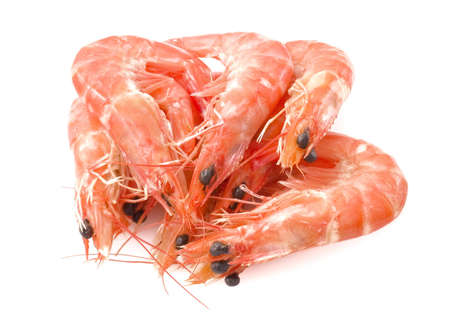 Cuisine and Food, Cooked Prawns or Tiger Shrimps in A White Plate.