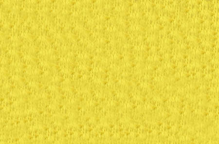 Background Pattern, Abstract Yellow Flower Petals Textured and Background with Copy Space for Text Decorated.
