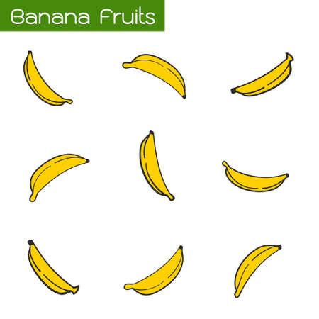 Tropical Fruits, Set of Fresh Ripe Bananas Isolated on White Background.