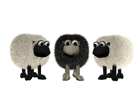 unhappy family: a b3d black sheep between two white sheep