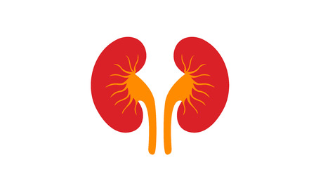 take care of your Kidney 向量圖像