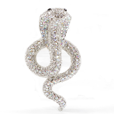 Silver Crystal Snake Brooch photo