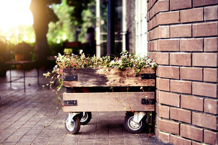 back yard: flower in wood box wheel lean on brick wall on the back yard