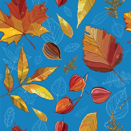 autumn leaves background: Vector seamless pattern with autumn set leaves, nuts, tree. Background with Thuja; aspen; physalis; alder; elm; willow; maple. eps 10