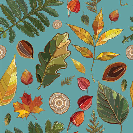 Vector seamless pattern with autumn set leaves, nuts, tree. Background with Thuja; aspen; physalis; alder; elm; willow; maple; oak; Potentilla. eps 10 Vector