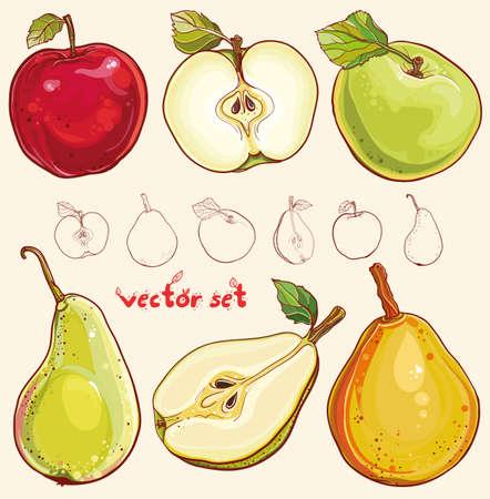 신선한 사과와 배의 밝은 그림입니다. 일러스트
