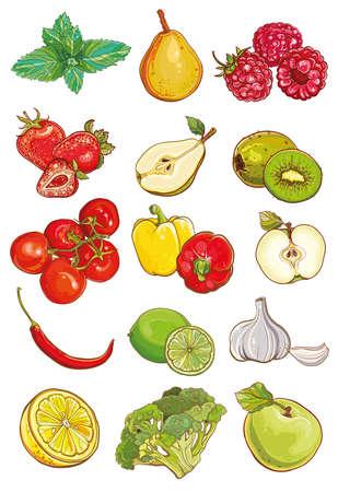 lemon lime: Vector set di verdure fresche, frutta e bacche. Apple, kiwi, fragola, lampone, pera, limone, lime, menta, pomodori, peperoni, peperoncino, aglio, broccoli.