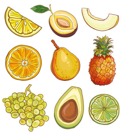 avocados: Vector illustration of lemon, plum, melon, orange, pear, pineapple, grapes, avocados, lime. Vector set with fruits and berries:  yellow, green and orange. eps 10