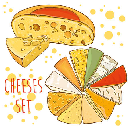 different types of cheese: Cheese collection. Different types of cheese. Bright vector illustration with cheeses. Set for design. eps 10 Illustration