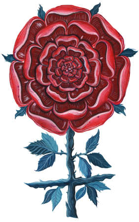 Gouache illustration of rose. Mandala rose. Rose cross. Isolated. Stock Photo