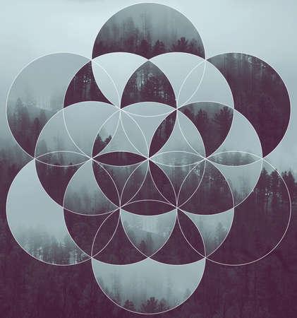 Zusammenfassung Hintergrund mit dem Bild des Waldes und der Blume des Lebens. Harmonie, Spiritualität, Einheit der Natur. Collage, Mosaik.