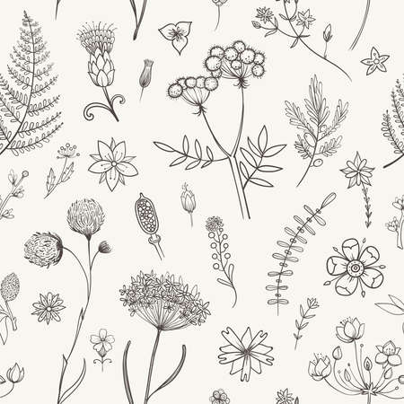 Vector seamless pattern with black and white herbarium flowers. Botanical backdrop