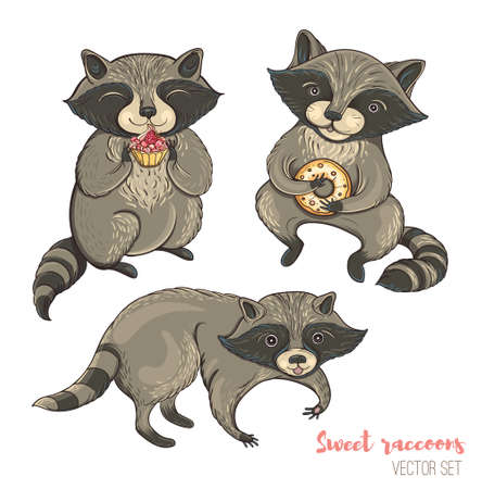 Vector illustration: set of cute characters raccoons with cakes and cookies. Isolated templates for design. Illustration