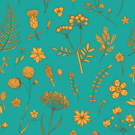Vector seamless pattern with herbarium flowers. Botanical backdrop. Template for graphic design, textile and postcards