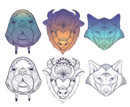 Vector set of illustrations of wolf, buffalo and walrus. Ethnic style, illustration for poster, tattoo.
