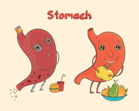 Cartoon vector illustration of healthy and sick human stomach. Funny educational illustration for kids. Isolated characters.