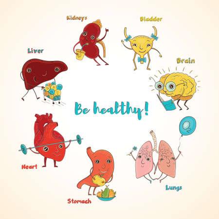 건강 한 인간의 기관의 만화 벡터 일러스트 레이 션. 아이들을위한 재미 교육 그림입니다. 격리 된 문자입니다. 건강!